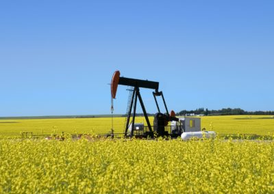 Critical Sour Gas Well Public Consultation and Rover